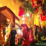 Navidad_Natatouille