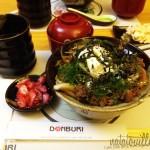 Gyudon_Donburi