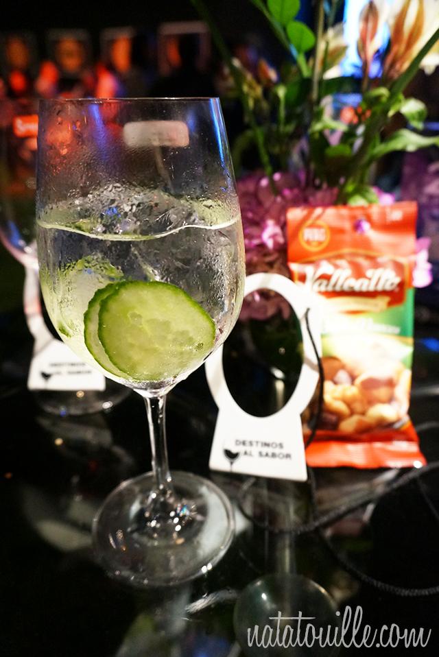 Gin Tonic con Pepino_Destinos al Sabor