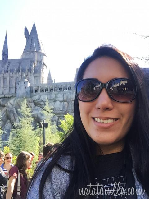 Natatouille en Hogwarts