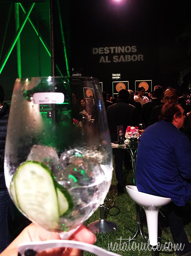 Gin con pepino_Destinos al Sabor