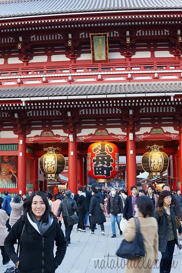Natatouille en Templo Senso-ji
